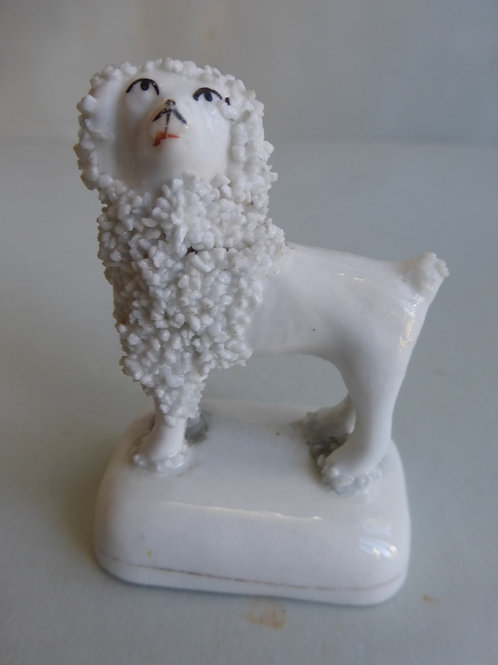 19TH CENTURY STAFFORDSHIRE PORCELLANOUS POODLE