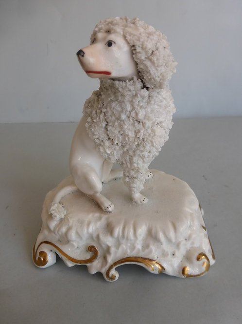 19thc. Staffordshire Porcellanous Poodle Possibly Dudson Ref. # 4191
