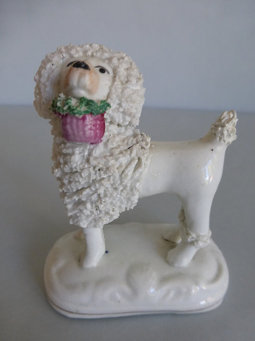 19THC. MINIATURE STAFFORDSHIRE OF POODLE