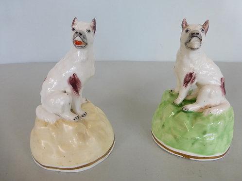 Rare Pair 19thc. Staffordshire Samuel Alcock Wolf Dogs Ref # 4245