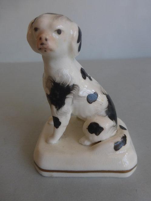 19thc. Staffordshire Porcellanous Miniature Spaniel Ref # 4184