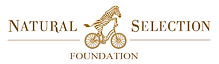 NSFoundation_CopperLogo (002).png