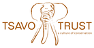 Tsavo-Web-logo.png
