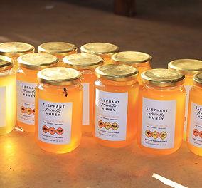 Jars-with-bee-s.jpg