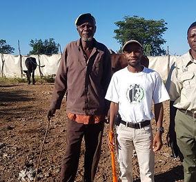 Cattle-Bome-Initiative-Zim-626x400.jpg