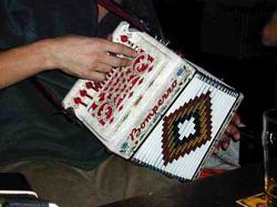 Dave's accordion