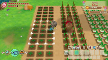 STORY OF SEASONS: Friends of Mineral Town Available Now on Nintendo Switch™ within Europe and Austra