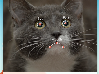 Classic app 'My Talking Pet' returns! Make a pet your very own personal assistant on iPhone!
