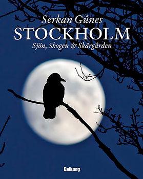 1stockholmbook.jpg