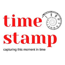 timestamp logo.png