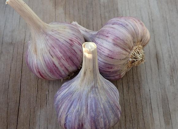 Duganski Garlic