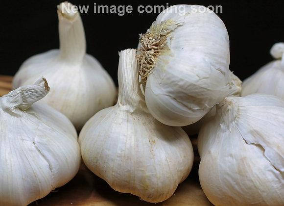 Red Toch Garlic (Tochliavri)