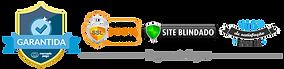 selo_site_seguro_mr_klauss-570x206 cópi