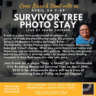 Survivor Tree Photo Stay