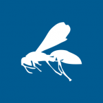 wasp1-150x150.png