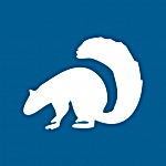 squirrel1-150x150.png