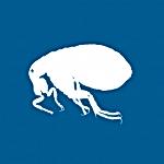 flea1-150x150.png