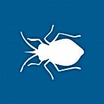 bedbug1-150x150.png