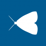 moth1-150x150.png