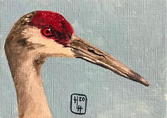 Sandhill Crane 2.5x3.5 Acrylic on Linen, HLH Art