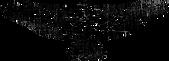 swearingen-kelli-logo-eagle2-FINAL.png