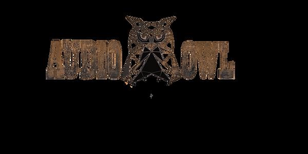 AUDIO OWL LOGO- neon.png