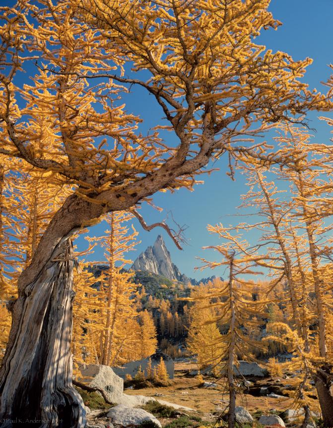 20140316--2.jpg Prusik Peak