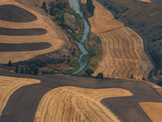 Food Prices and Climate Instability