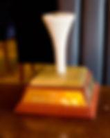 white tee trophy.jpg
