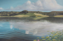 Lake and the Lilies,