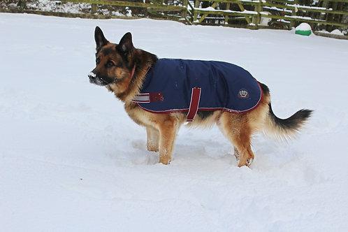 Mackey Buster Dog Rug