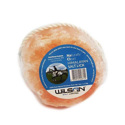 Wilson Himalayan Salt Lick