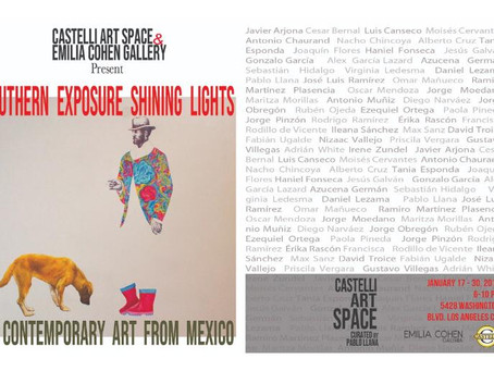 Southern Exposure. Shining Lights in Contemporary Art from Mexico