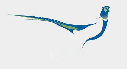 76-764189_pheasant - Copia.jpg