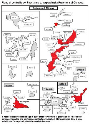 Okinawa Prefecture - Copia - Copia.PNG
