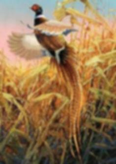 pinterest com 5.jpg