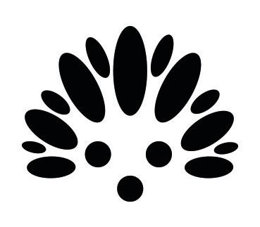 Hotchi Witchi: Totem Logo