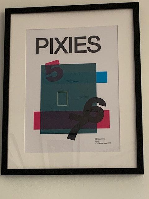 Pixies framed print