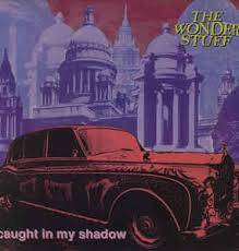 The wonder stuff- Caught in my shade