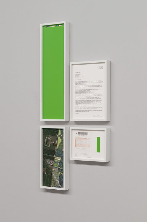 Momordica charantia, new colour proposal  I, II, III, series, 2020