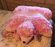 poodle pillow2.jpg