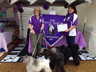 sandy and charlene win for poodle club.j