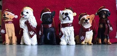 photo xmas dogs.jpg