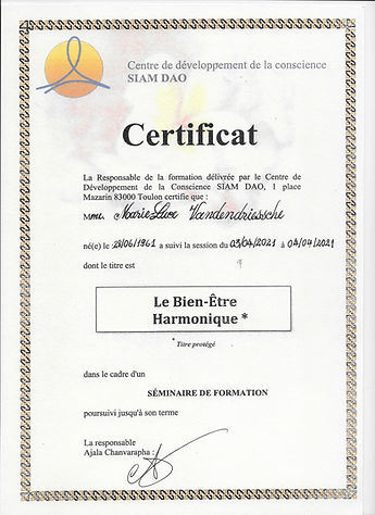 Certificat Le Bien-être Harmonique.jpg