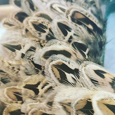 Feather feathers feathers!! Pheasant Feather Wreath or Shooting Gift or Table Decoration