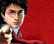 Harry Potter Franchise Retail Branding