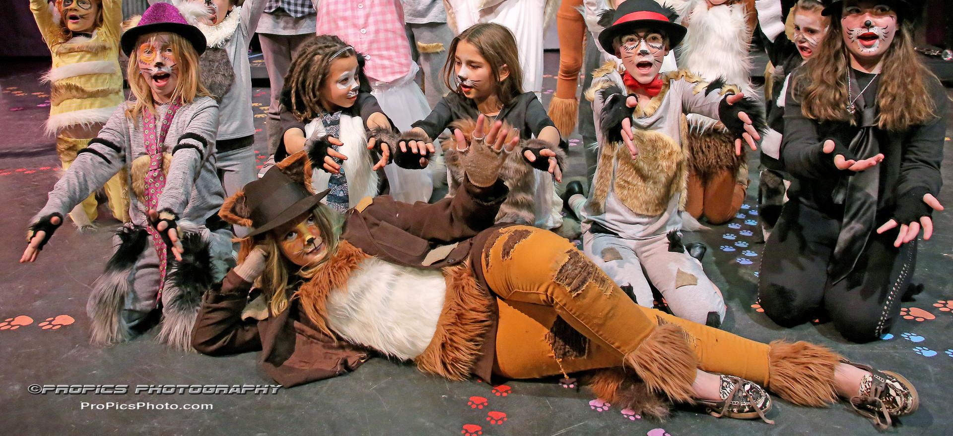Arisocats Kids- Troupers