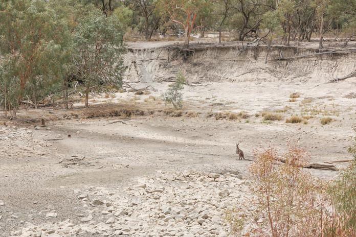 Outback 2019 wide-68.jpg