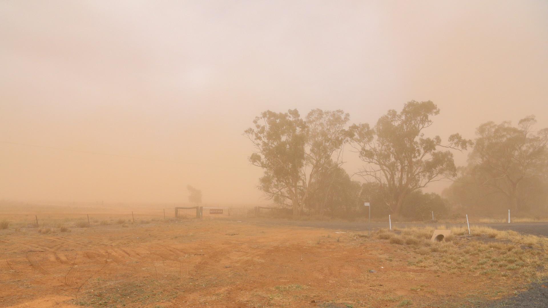Dust Storm NSW