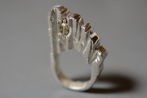 NOTHING IS SET IN STONE RING